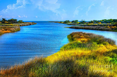 Pamlico Sound On Ocracoke Island Outer Banks Poster by Dan Carmichael