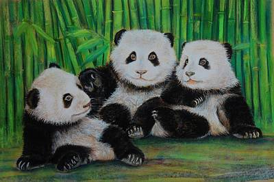 Panda Cubs Poster by Jean Cormier