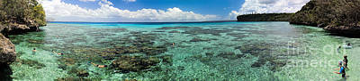 Panorama Of Snokeling Beach In New Caledonia Poster by David Smith