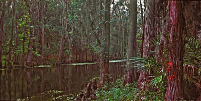 Panoramic Of Shingle Creek. Poster by Chris  Kusik