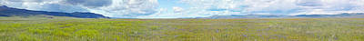 Panoramic View Of Spring Grasslands Poster by Panoramic Images