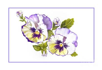 Pansies For Ree Poster by Joan A Hamilton