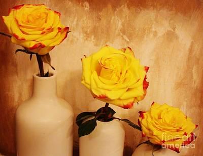 Papa Mama Baby Roses Poster by Marsha Heiken