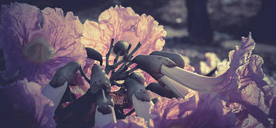 Paper Flowers - Purple Poster