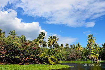 Paradise Lagoon Poster