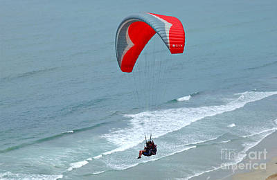 Paragliding At Torrey Pines Poster