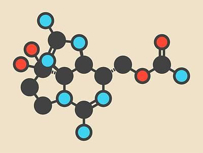 Paralytic Shellfish Toxin Molecule Poster