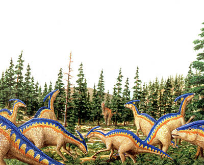 Parasaurolophus Dinosaurs Poster