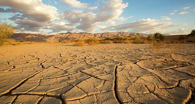 Parched Ground In A Desert Poster by Photostock-israel