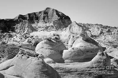 Paria Utah Viii Poster by Dave Gordon