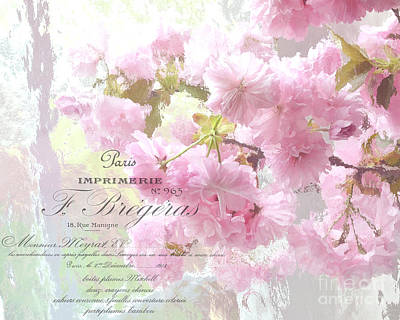 Paris Dreamy Pink Blossoms Tree - Paris Cherry Blossoms With French Script Letter Writing Poster by Kathy Fornal