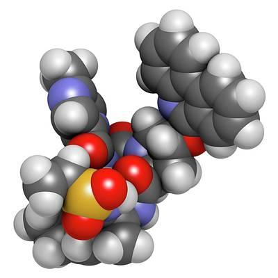 Paritaprevir Hepatitis C Virus Drug Poster by Molekuul