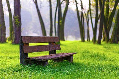 Park Bench And Green Grass Poster by Wladimir Bulgar