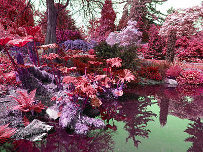 Poster featuring the photograph Park Pond Red by Laurie Tsemak