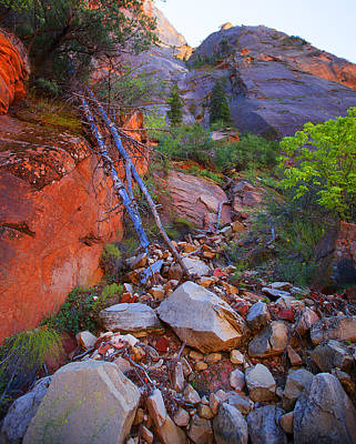 Zion National Park Utah Usa Poster by Richard Wiggins