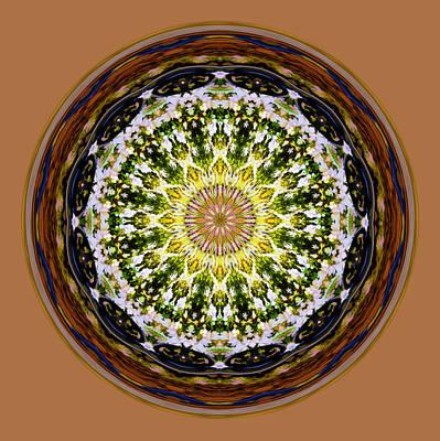 Parkside Mandala Poster
