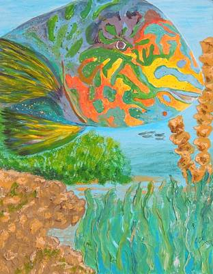 Parrotfish In The Coral Poster by Connie Campbell Rosenthal