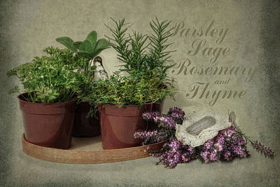 Parsley Sage Rosemary And Thyme Poster by Robin-Lee Vieira