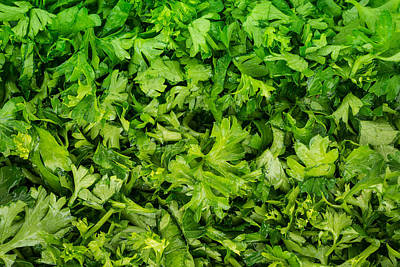 Parsley Poster