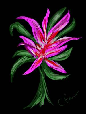 Poster featuring the digital art Passion Flower by Christine Fournier