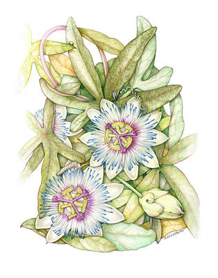 Passionflower Poster