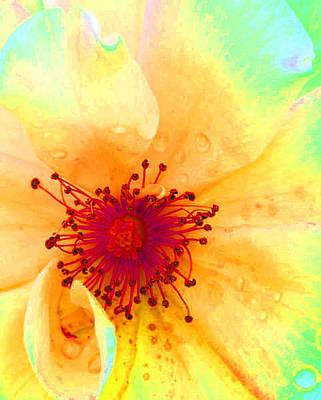 Pastel Garden Poster by Charlotte Schafer