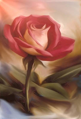 Pastel Light Red Rose Poster