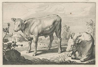 Pasture With Two Bulls, Reinier Van Persijn Poster by Reinier Van Persijn And Jacob Gerritsz Cuyp And Nicolaes Visscher (i)