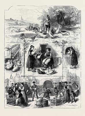 Pate De Foie Gras At Strasburg Poster by English School