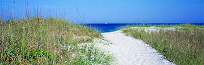 Path To Beach, Venice, Florida, Usa Poster by Panoramic Images