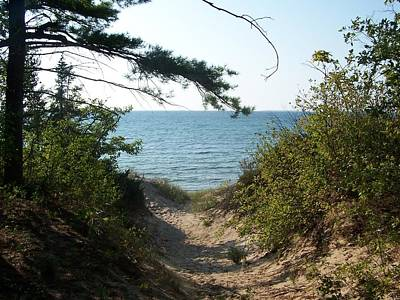 Path To Lake Michigan Poster
