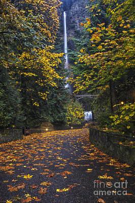 Path To Multnomah Falls Poster by Mark Kiver