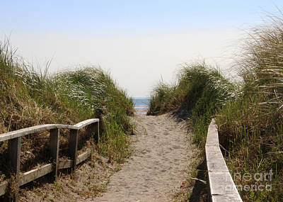 Path To The Beach Poster by Cheryl Aguiar
