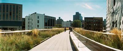 Pathway, High Line, Chelsea, Manhattan Poster