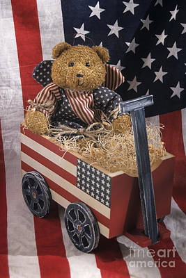 Patriot Bear Poster