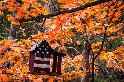 Poster featuring the photograph Patriotic Birdhouse - 01 by Wayne Meyer