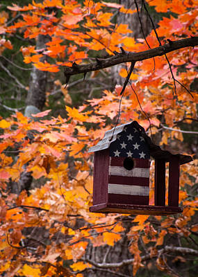 Poster featuring the photograph Patriotic Birdhouse - 02 by Wayne Meyer