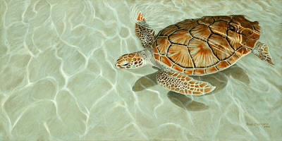 Patterns In Motion - Portrait Of A Sea Turtle Poster by Rob Dreyer