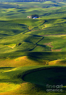 Patterns Of The Palouse Poster by Mike Dawson
