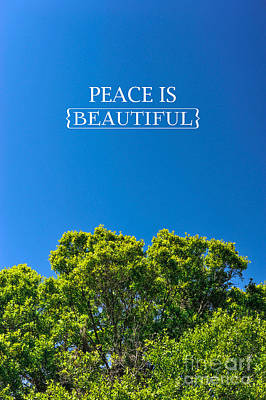 Peace Is Beautiful Poster by Liesl Marelli