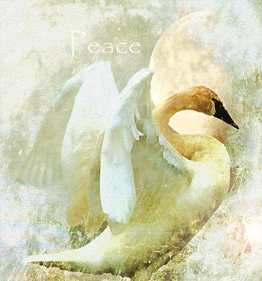 Peace Poster by Kathy Bassett