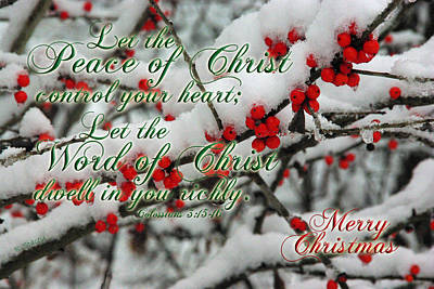 Peace Of Christ Holly Poster