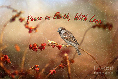 Peace On Earth Poster by Darren Fisher