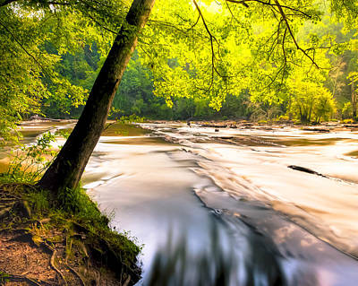 Peaceful Banks Of Sweetwater Creek Poster by Mark E Tisdale