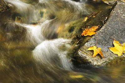 Peaceful Creek Poster