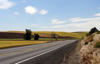 Peaceful Palouse Poster by Anne Mott