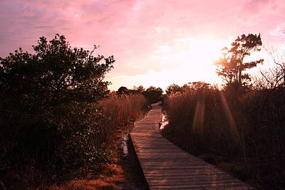 Poster featuring the photograph Peaceful Path by Karen Silvestri