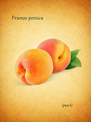 Peach Poster by Mark Rogan