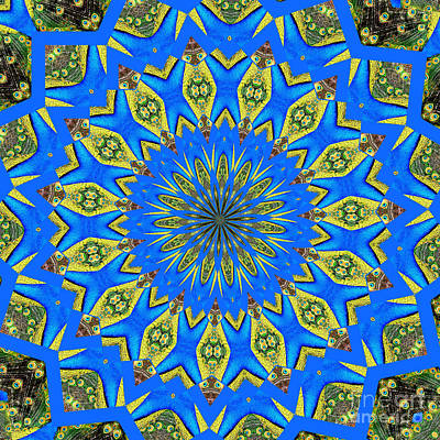 Peacock Feathers Kaleidoscope 8 Poster by Rose Santuci-Sofranko