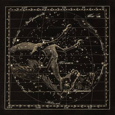 Pegasus Constellations, 1829 Poster